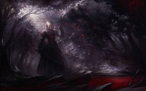yande 165318 alcd fate stay_night saber saber_alter